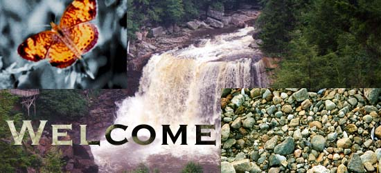 Welcome Nature