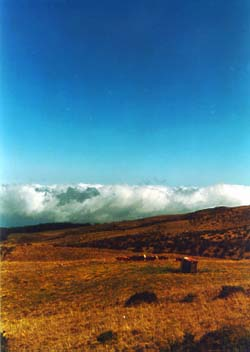 Open Field With Clouds
